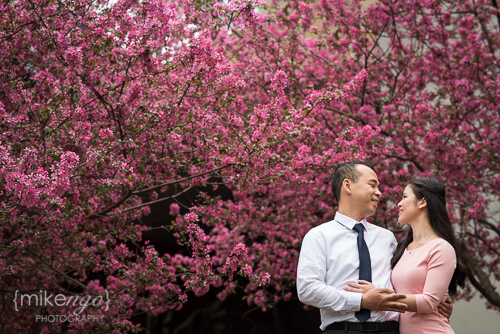 Mike Ngo DUMBO Brooklyn NYC Engagement Wedding -5.jpg