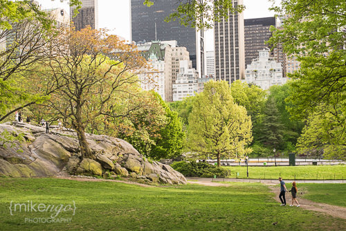 Mike Ngo Engagement Central Park -11.jpg